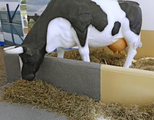 Nykyaikaisilla pinnoitteilla voidaan helpottaa kotieläintilojen puhdistamista ja parantaa hygieniaa. Pinnoitustuotteita valmistavaa Tikkurilaa ei juuri maatalousmessuilla ole näkynyt, mutta nyt yritys oli Viljossa tuotteitaan käyttävän urakointiyrityksen, Pinnoitus Paukkosen kanssa yhteisellä osastolla. Esillä oli navetoiden pinnoituksessa käytettäviä tuotteita. Lattioihin sopivat Temafloor-sarjan lakat, massat ja pinnoitteet. Sisäseiniin ja -kattoihin käy Fontefloor EP 100 -epoksimaali. Lantarasitukseen joutuvat teräsrakenteet voi suojata Temacoat RM 40 -epoksimaalilla. Pinnoitusten valikoima ja samalla myös hintahaarukka on laaja. Rahaa saa kulumaan 10–50 euroa neliölle. Hinta vaihtelee pinnoitettavan alustan, tarvittavan työmäärän ja käytettävän aineen ja käyttömäärän mukaan. Kalvojen paksuutta on mahdollista säätää välillä 1–10 mm kulutuksen ja alustan mukaan. Pinnoitustuotteiden alla käytetään aina pohjustetta eli primeria, jonka päälle levitetään pintakerros. Päivän aikana pystyy normaalisti tekemään kolme kerrosta. Navetan tai sikalan ei myöskään tarvitse olla ankean harmaa. Nyt tarjolla on useita eri sävyjä, myös metallinhohtovärejä. Seiniin voi hakea näyttävyyttä ja käytännöllisyyttä maalaamalla alaosan tummalla ja yläosan valoa paremmin heijastavalla vaalealla sävyllä. www.tikkurila.fi