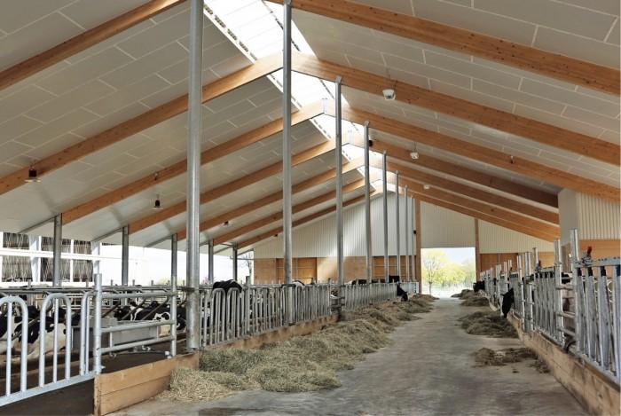 Uusimmassa hallissa ovat ummessaolevat ja poikivat lehmät sekä tilat ostajille esiteltäville eläimille. Halli on rakennettu viime vuonna. Siinä on verhoseinät, kuten vanhemmissakin pihatoissa, mutta eristetty katto, jotta palomääräykset täyttyvät ja toisaalta, jotta eläinten katsojilla on mukavat olot.