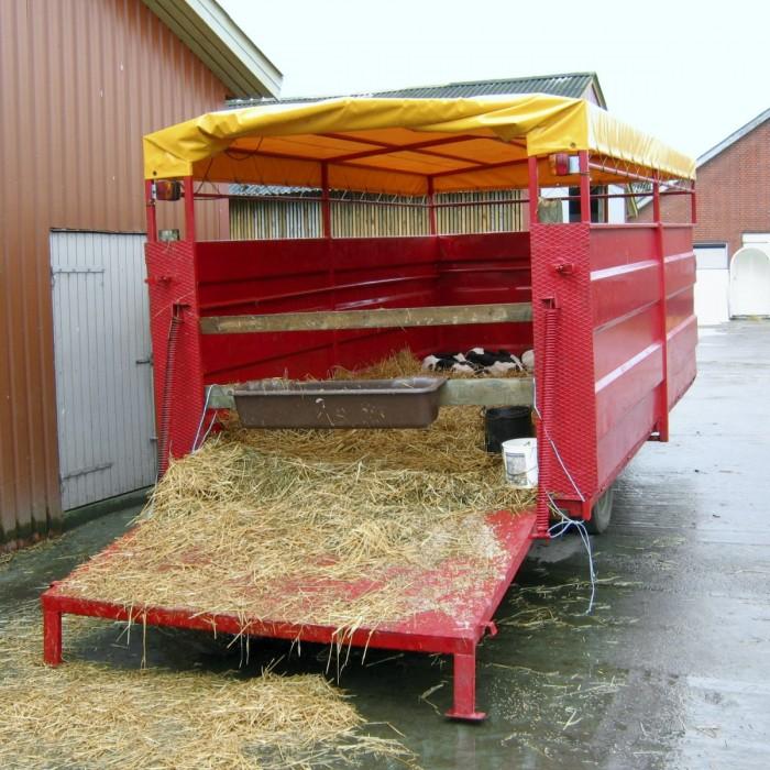 Tällä tilalla vasikoiden nouto on ratkaistu siten, että haettavat vasikat kootaan pihalla olevaan eläinkuljetusvaunuun, josta välitysauto ottaa ne kyytiin. Kuljettaja ei pääse kosketuksiin tilan muiden eläinten kanssa. Vasikkavaunu voidaan pestä ja desinfioida ulkona heti, kun vasikat on viety. Ylimmän kuvan ratkaisuun verrattuna etuna on, että kaikki juottovasikat ovat samassa paikassa lähtöpäivänä. Ratkaisun haittana on, että samalla kun vasikat siirretään yksilökarsinoista eläinkuljetusvaunuun, ne on totutettava ryhmäkasvatukseen. Eläinkuljetusvaunujen hinnat alkavat Tanskassa 670 eurosta, koosta ja kunnosta riippuen.
