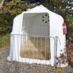 Välitysvasikat voidaan viedä kokonaan pois pihasta, jolloin kuljettaja, auto ja tilan omat eläimet ja hoitajat eivät ole kosketuksissa toisiinsa, ja tautiriski pienenee olennaisesti. Tässä tilan ulkopuolelle sijoitetussa ryhmäiglussa vasikat ovat vain tunnin tai pari ennen noutoa. Iglu on kuivitettu oljella ja sahanpurulla. Punainen postilaatikko kyljessä on eläinten papereita varten. Huono puoli on, että iglut pitää erikseen siirtää pesupaikalle. Hinta Tanskassa noin 1200 € + alv, JFC-ryhmäiglu, HZ Skibelund.
