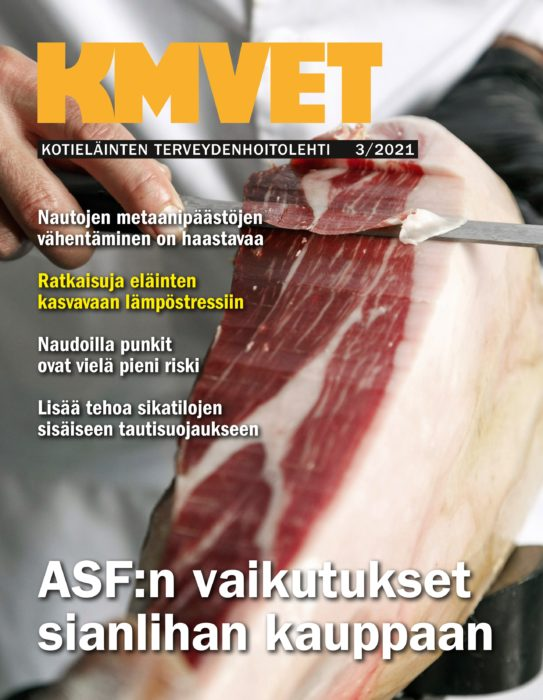 Uusin näköislehti